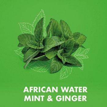Shea Moisture African Water Mint Ginger