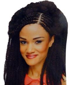 Cherish Reggae Syn Marley Twist Braid