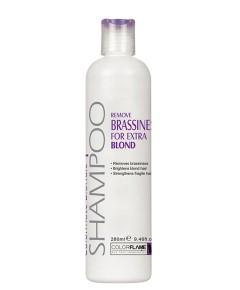 Colormate Blondie Plus Shampoo