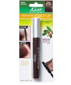 Kiss Colors Quick Cover Gray Hair Touch Up Brush BGC02