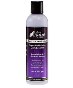 Easy On The Curls Detangling Hydration Conditioner